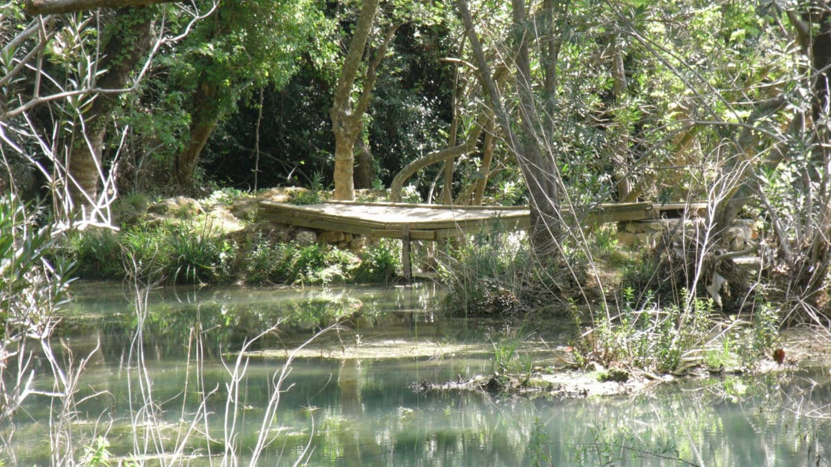 Übe dich in Achtsamkeit und entdecke in der Natur, was um dich herum passiert. Diese Hängebrücke wäre dir sonst vielleicht entgangen.