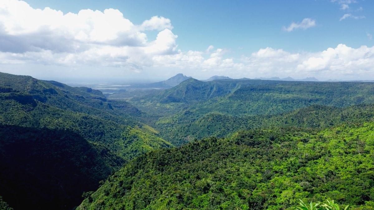 Der Black River Gorges National Park in Mauritius