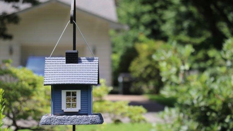 Zurück in Deutschland leben wir in einem blauen Holzhaus