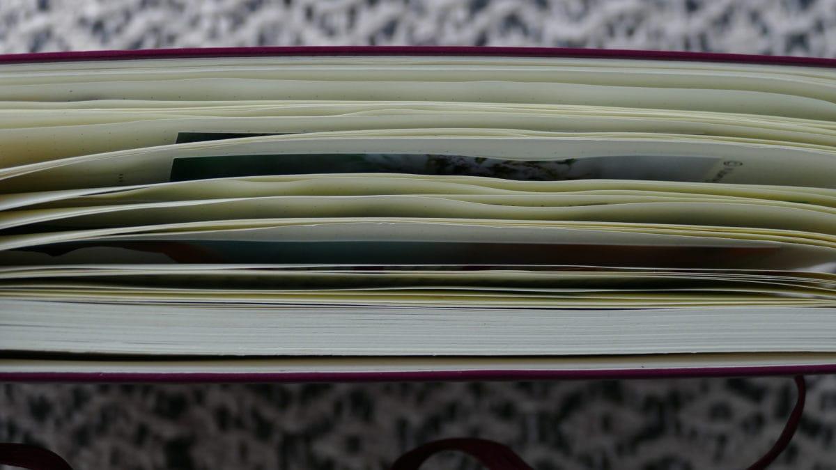 Ein Bullet Journal zu füllen und mit den Zielen und Werten zu versehen, ist eine schöne Aufgabe für das ganze Jahr.