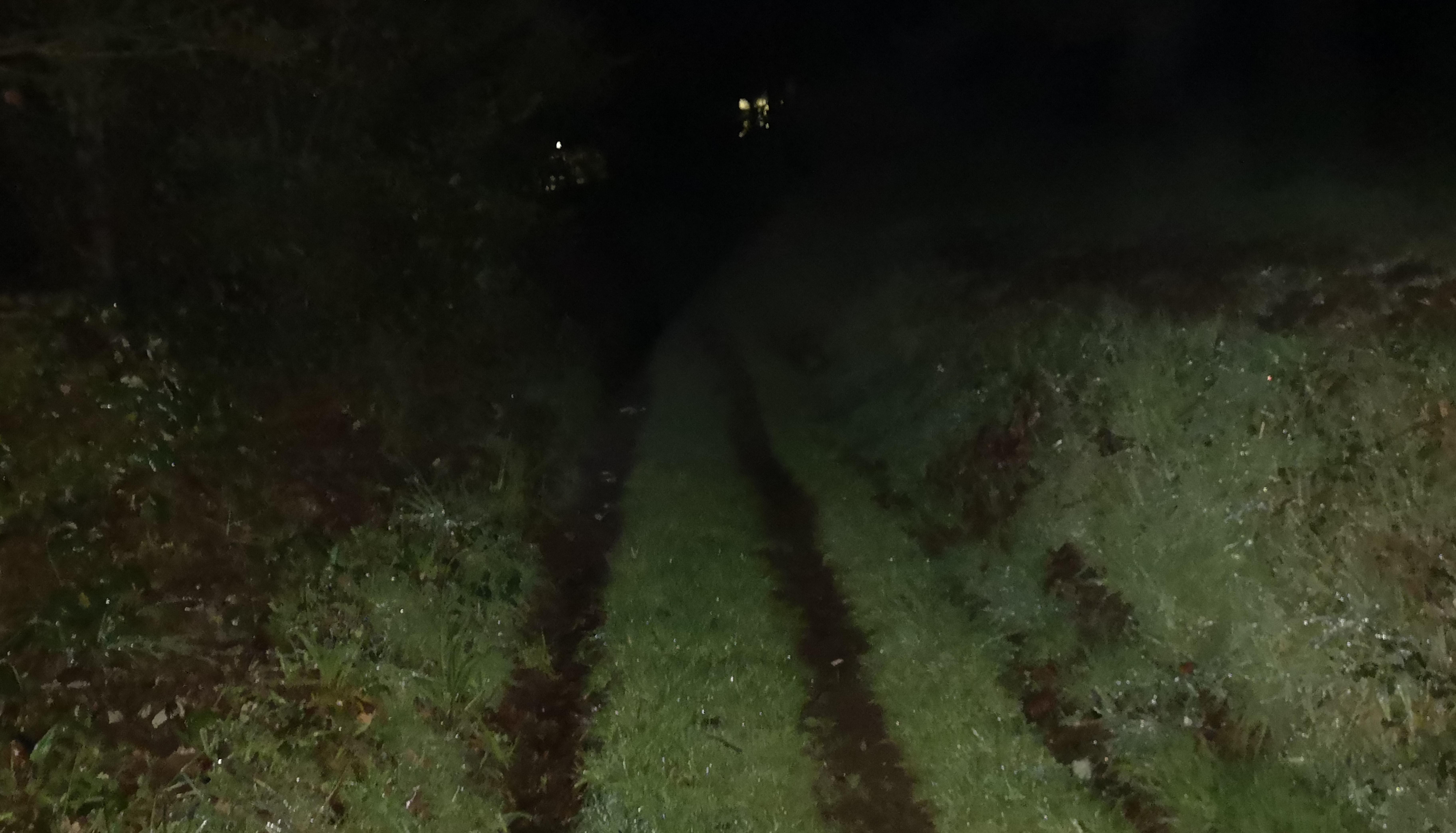 Wenn wir morgens losgehen, ist der Camino Primitivo noch komplett dunkel.