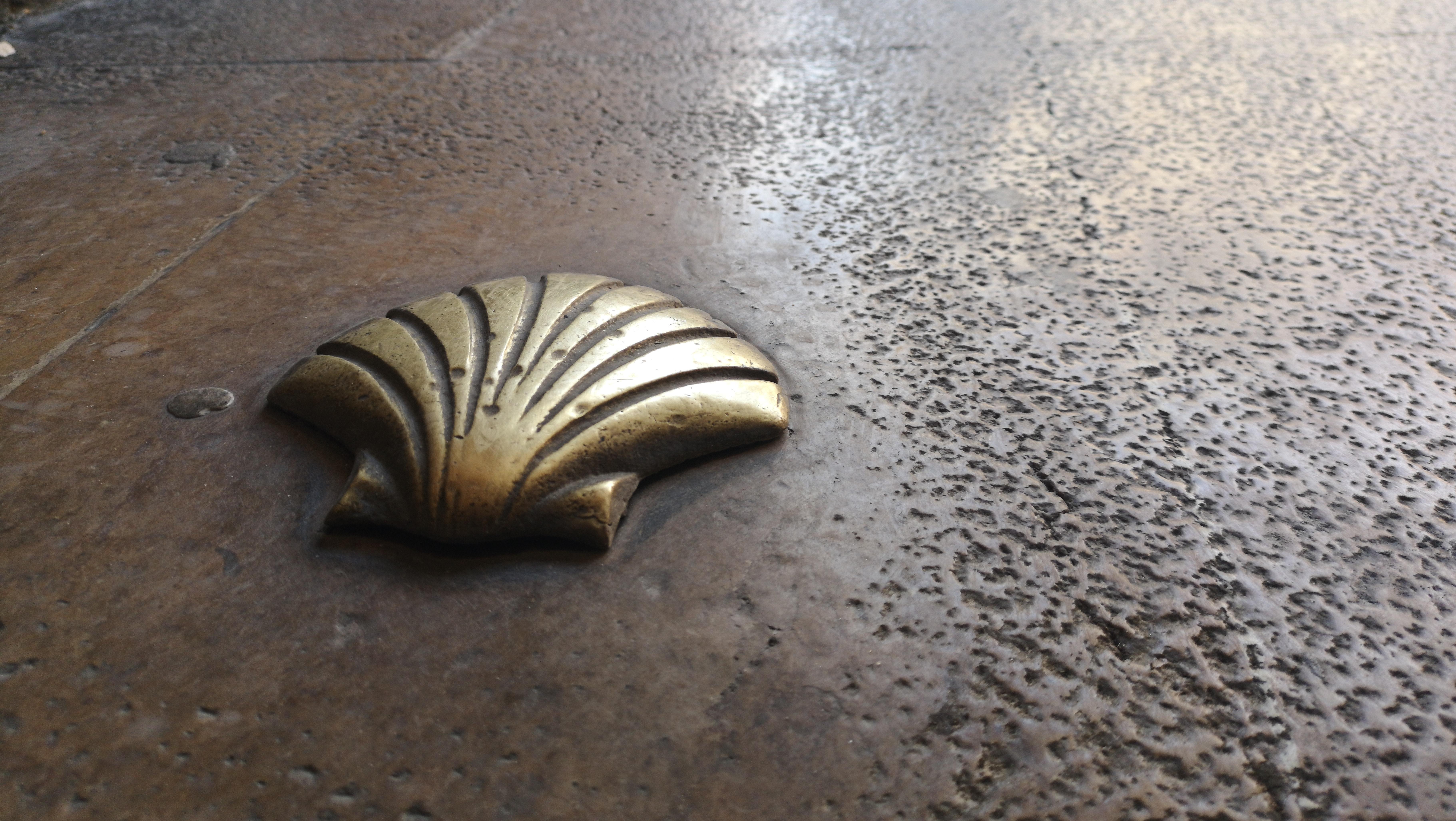 Die Muschel als Symbol für den Jakobsweg