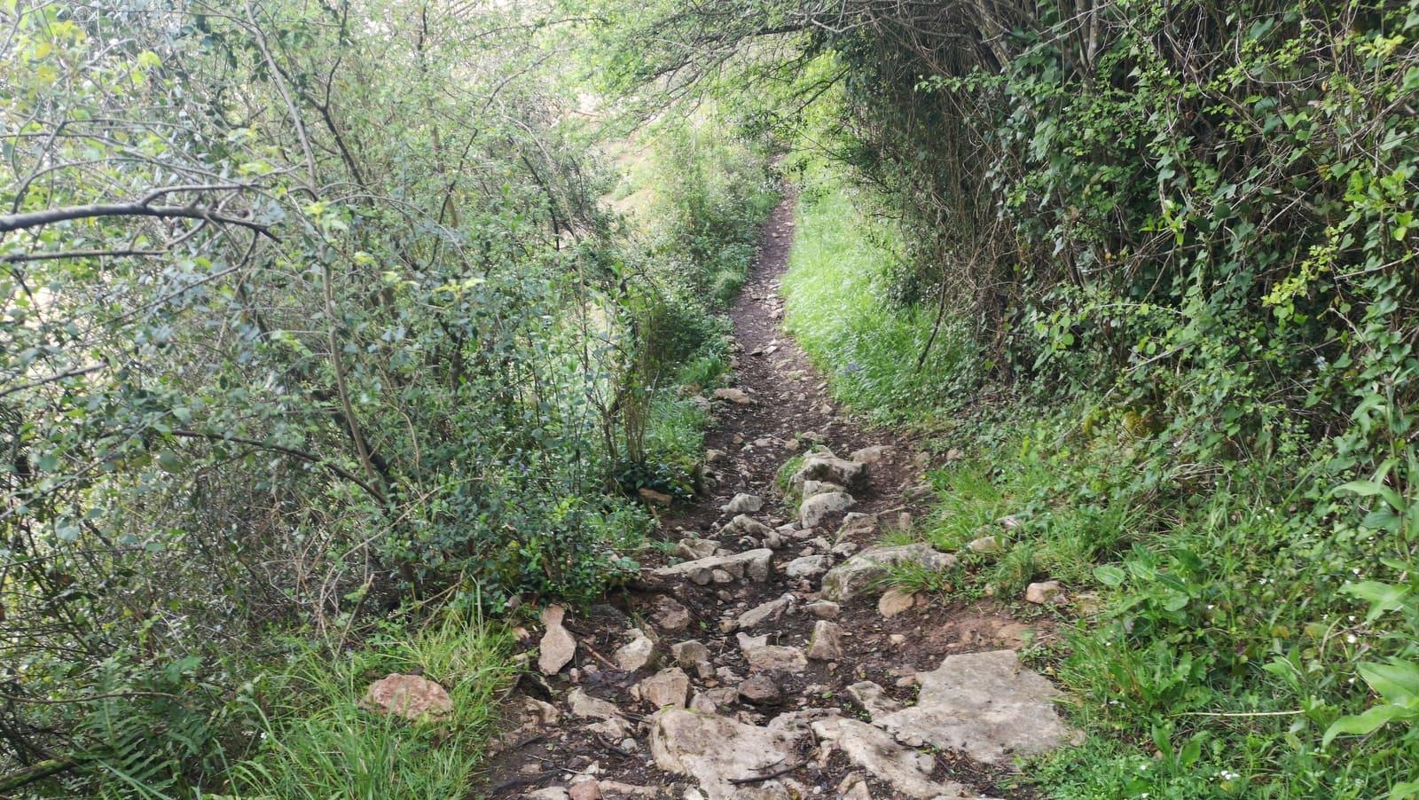 Auf und ab auf dem Camino Primitivo