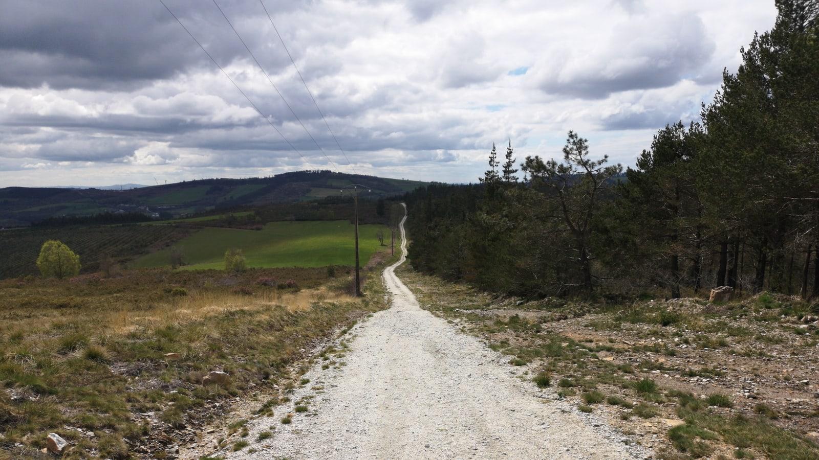 Endlos lang schlängelt sich der Camino Primitivo durch die Landschaft, schön und idyllisch ist es hier und wir wissen wieder, warum wir uns das hier antun.