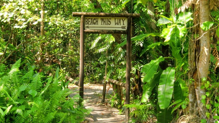 "Schild ""Beach this way"" am Cape Tribulation in Queensland Australien"