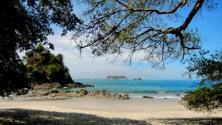 Kapuzineräffchen am Strand von Manuel Antonio in Costa Rica