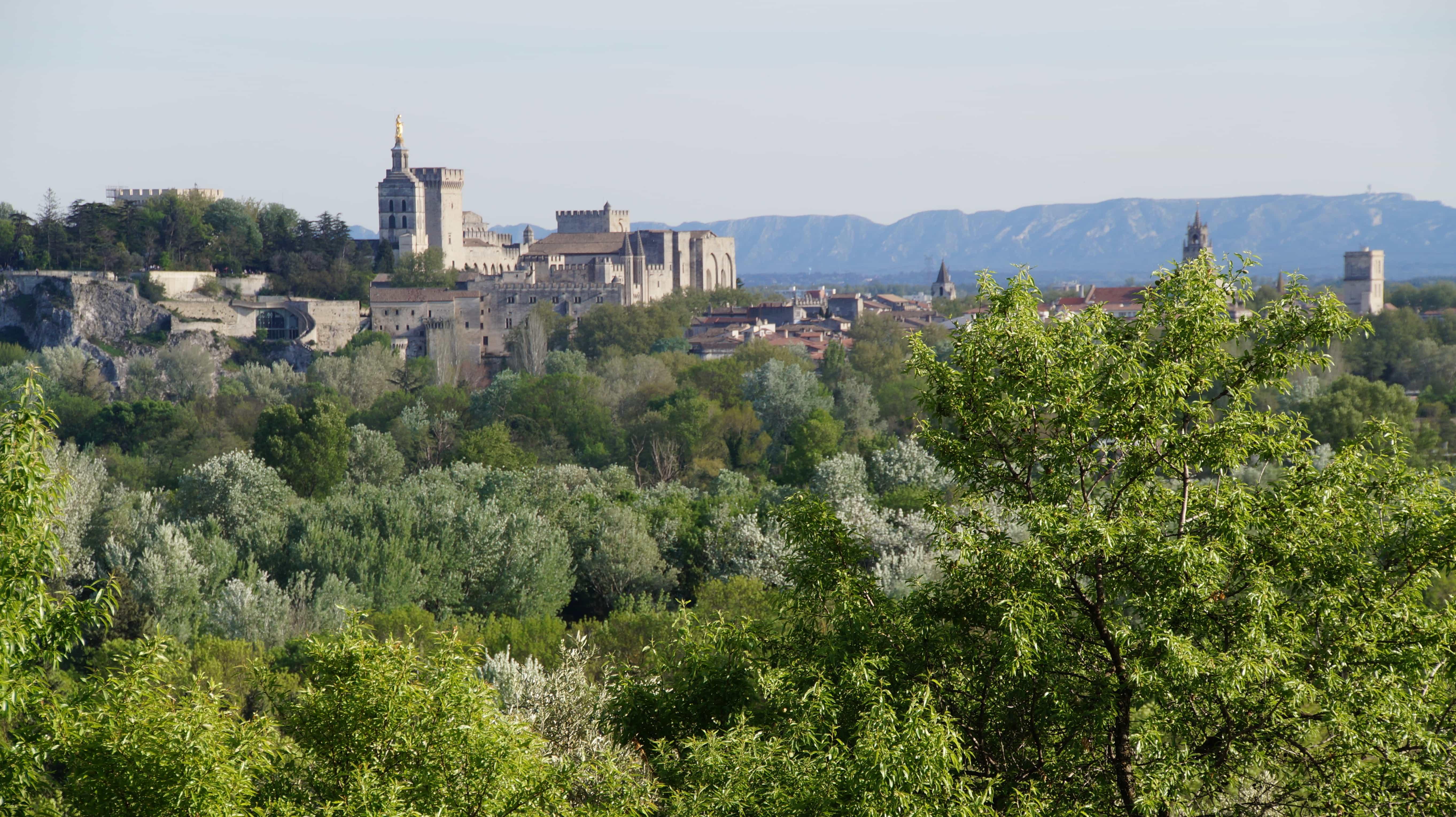 Blick von oben in Avignon in Frankreich