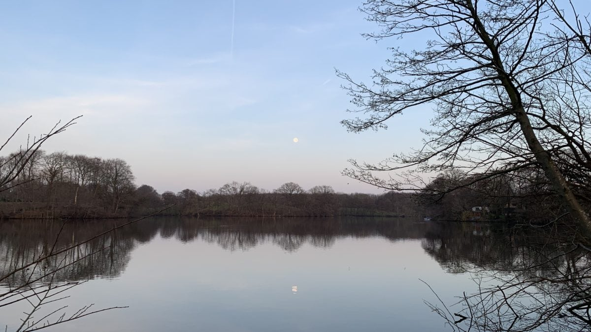 Abendstimmung: Der Mond scheint auf den See in Glücksburg