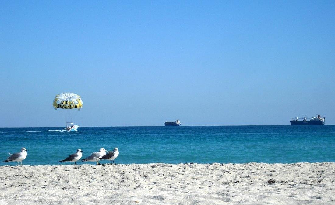 Johanna Bose am Strand mit Blick aufs Meer