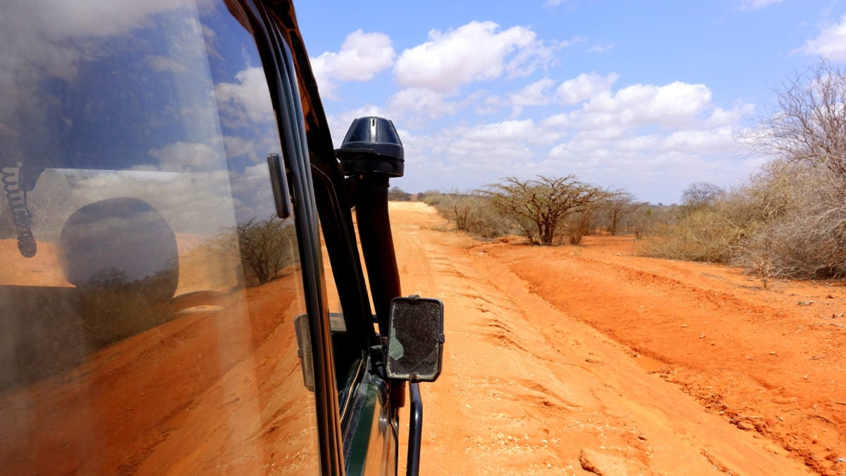 Safari im Tsavo East National Park in Kenia