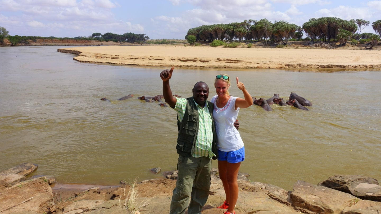 Nilpferde im Tsavo East National Park in Kenia