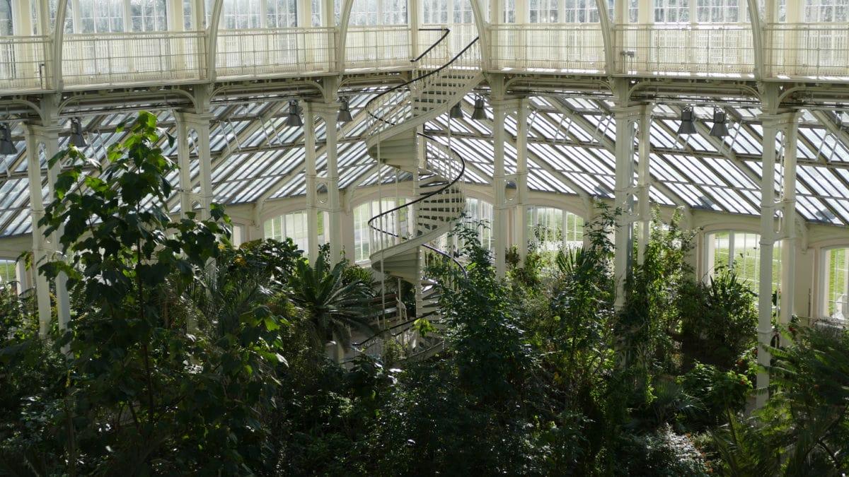 Bei meinem Besuch im Temperate House in Kew Gardens dreht gerade ein Filmteam eine neue Dokumentation.