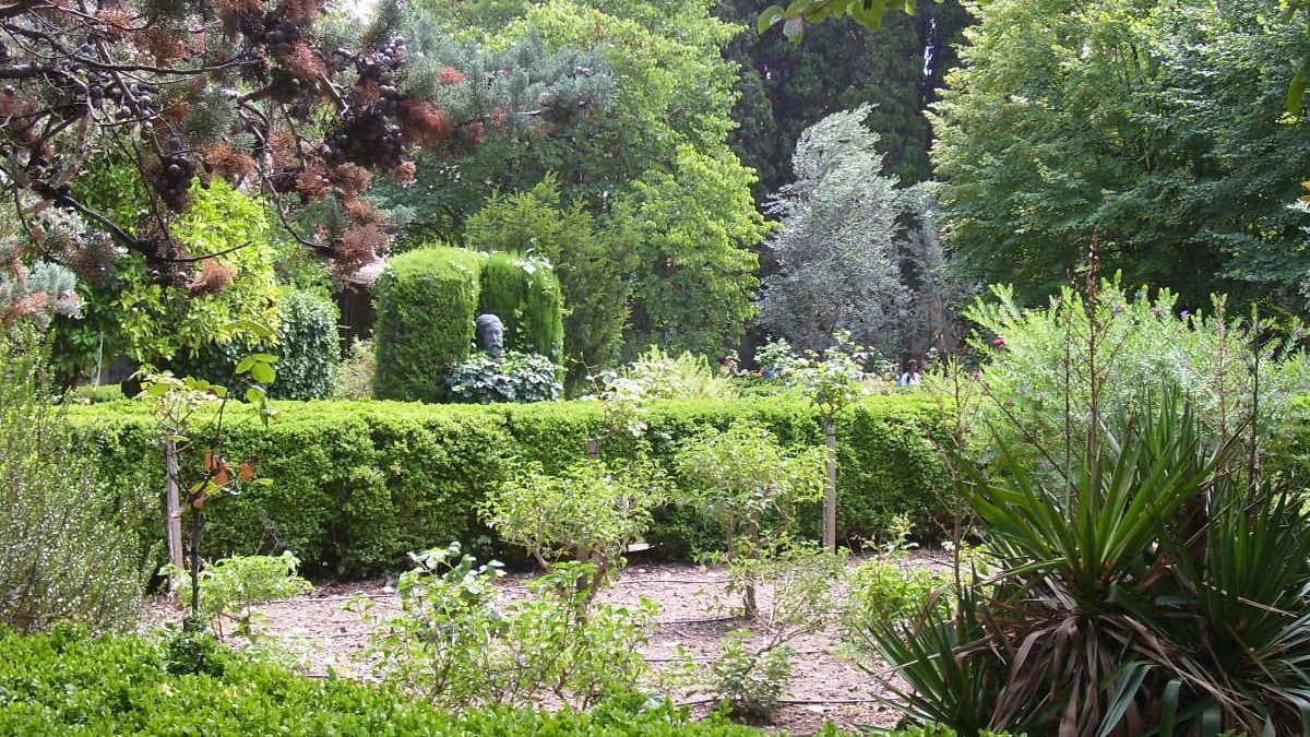 Ein grüner Park in Valldemossa