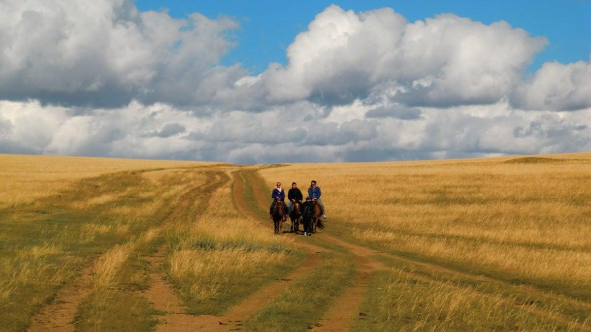 Ausritt mit Pferden in der Steppe in der Mongolei