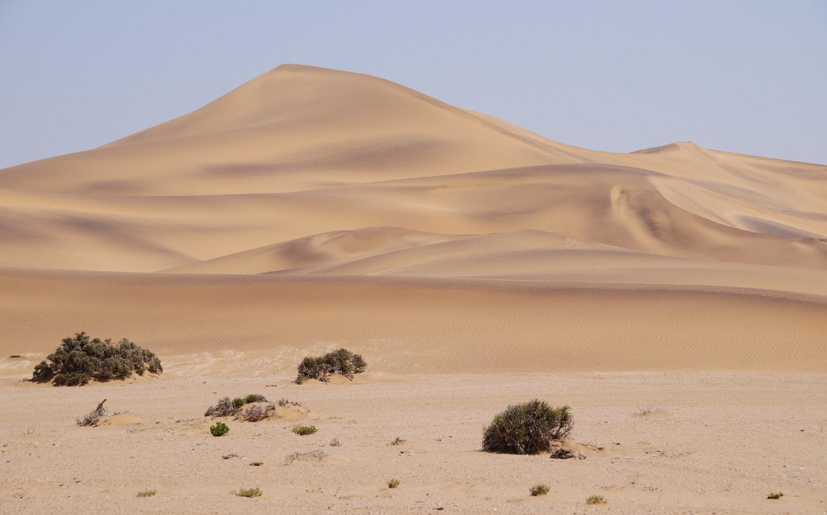 Die Namib Wüste in Namibia