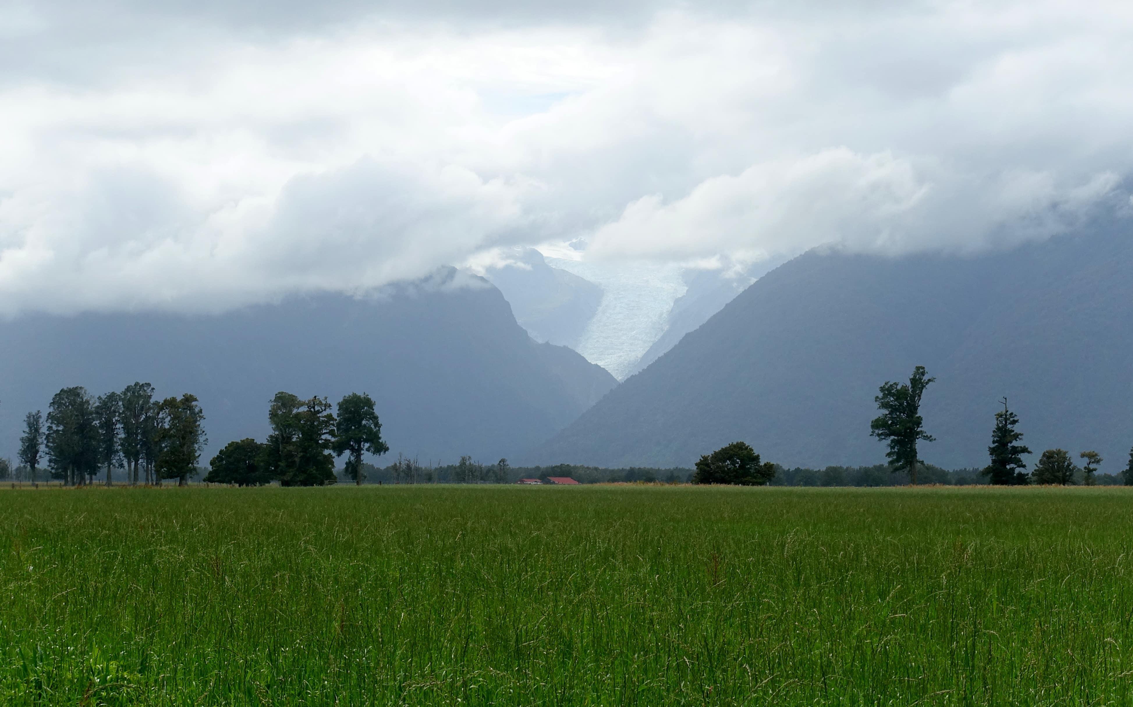 Peak Viewpoint in Neuseeland zum Fox Glacier