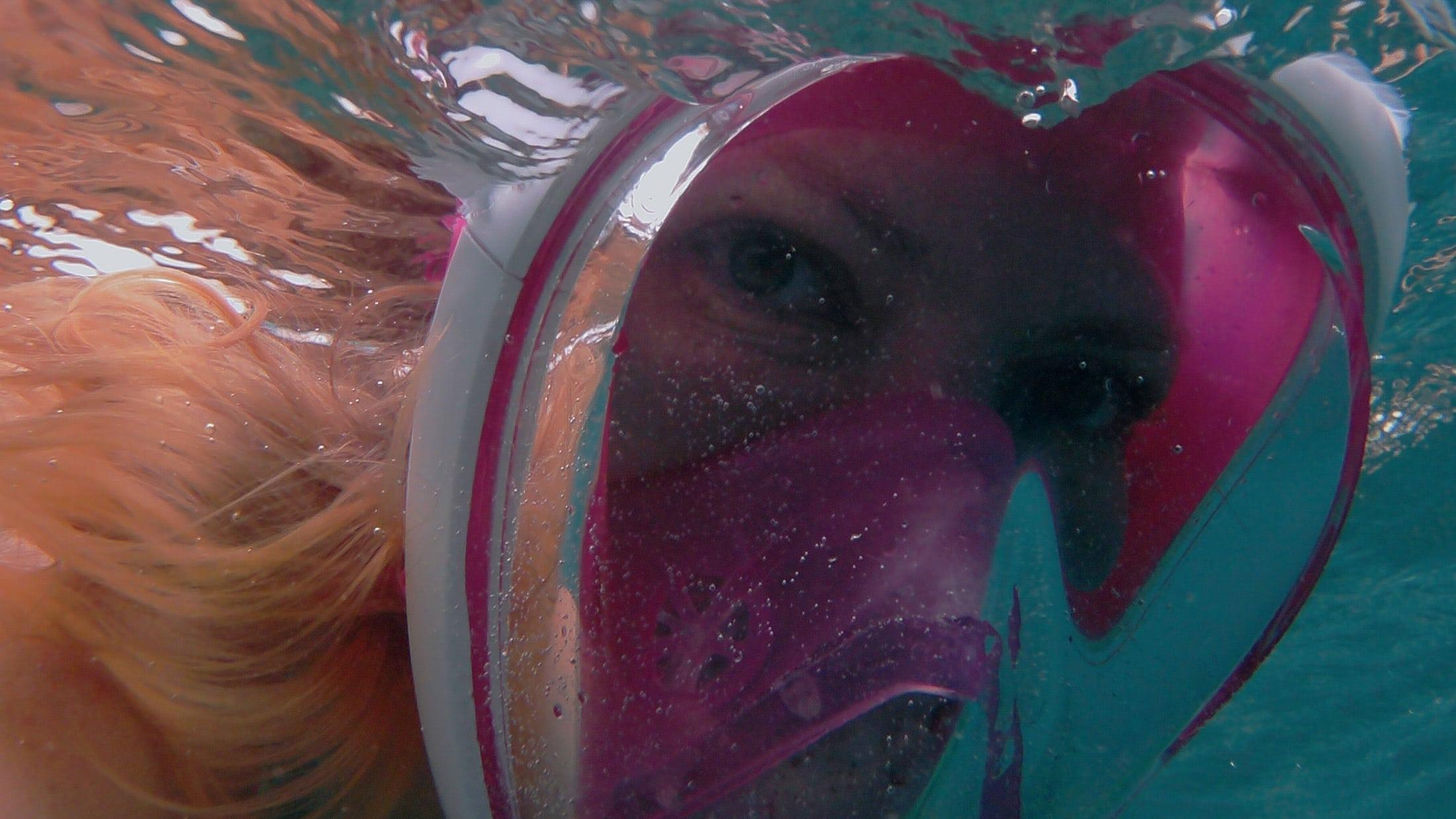 Im Vorfeld habe ich lange überlegt und recherchiert, ob man wirklich mit Delfinen schwimmen sollte. Im Nachhinein bin ich aber froh, mich dafür entschieden zu haben.