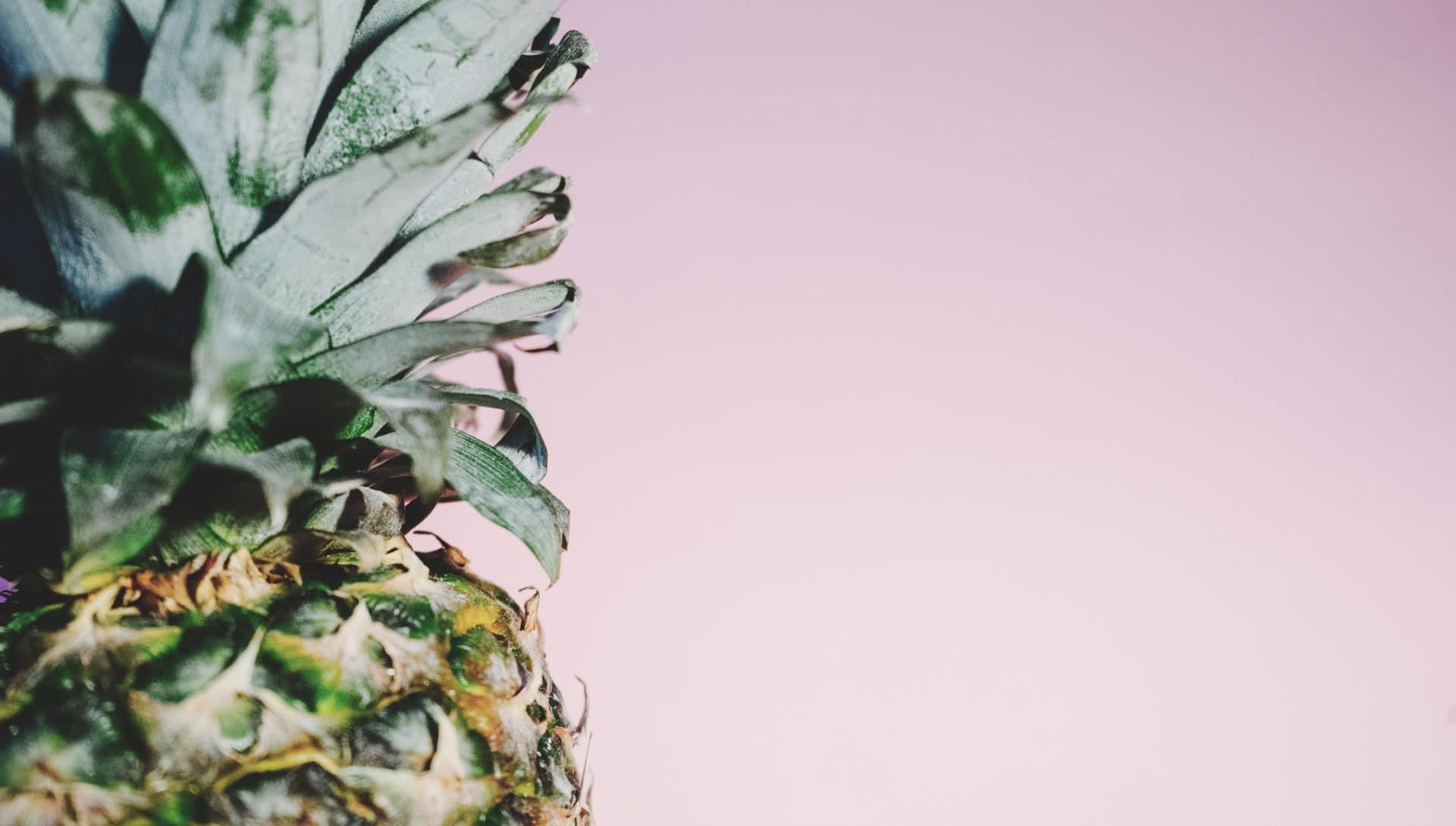 Pineapple Das Ananas-Ranking