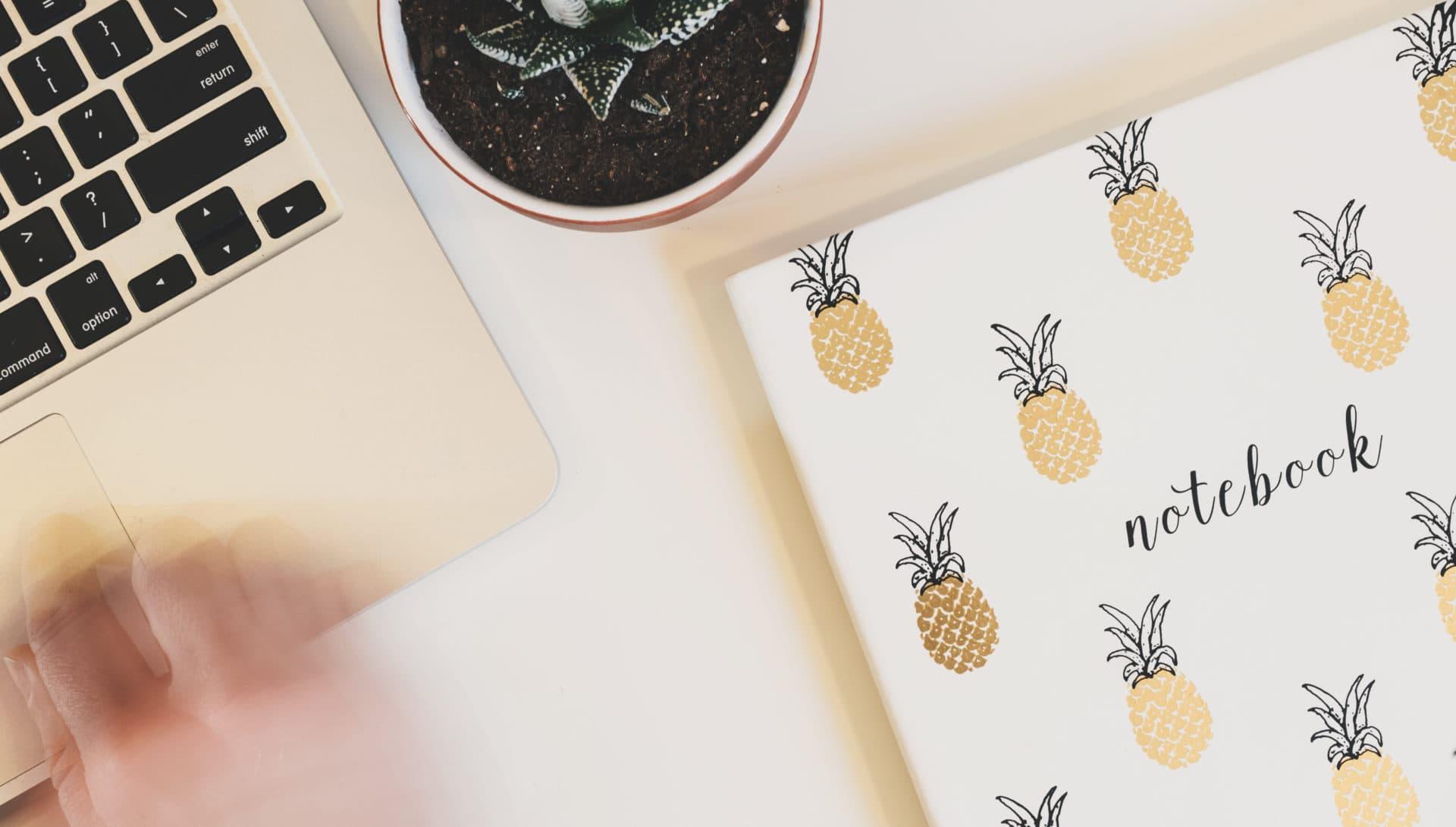 Pineapple Gastautoren
