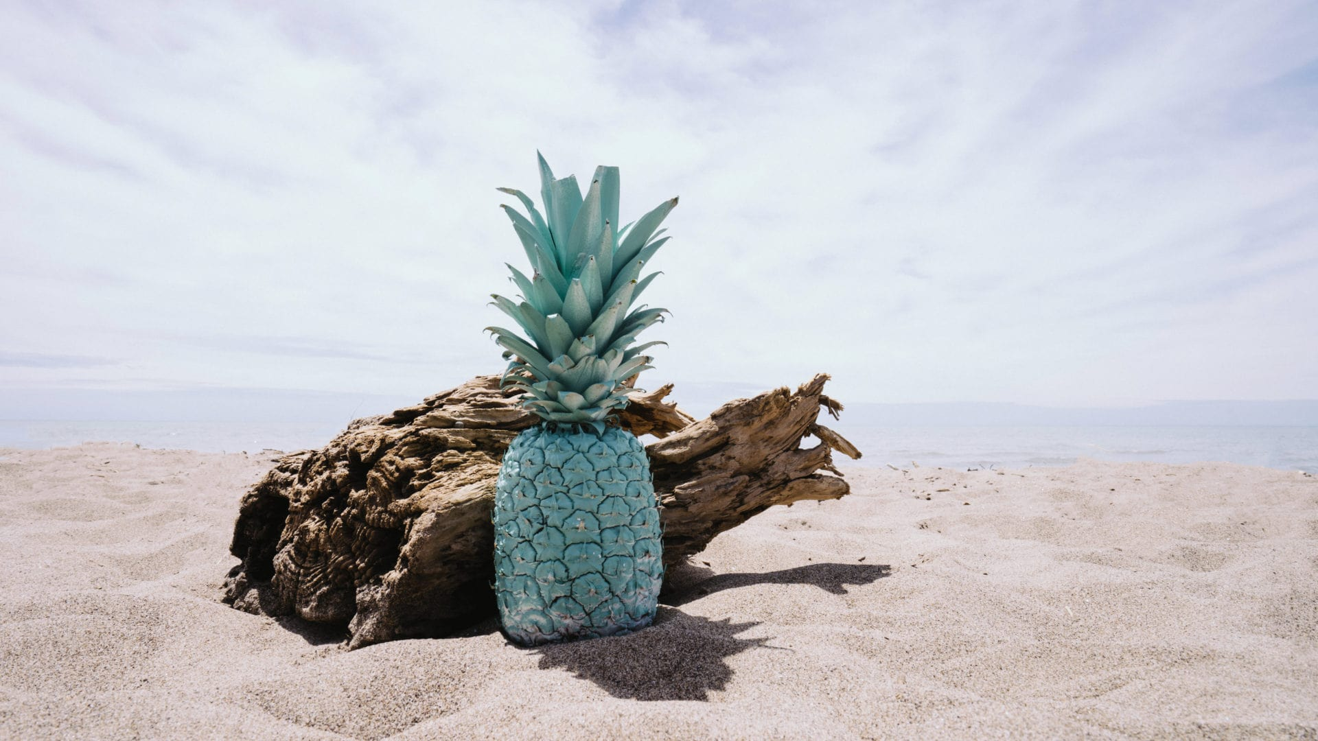 Pineapple Über den Blog