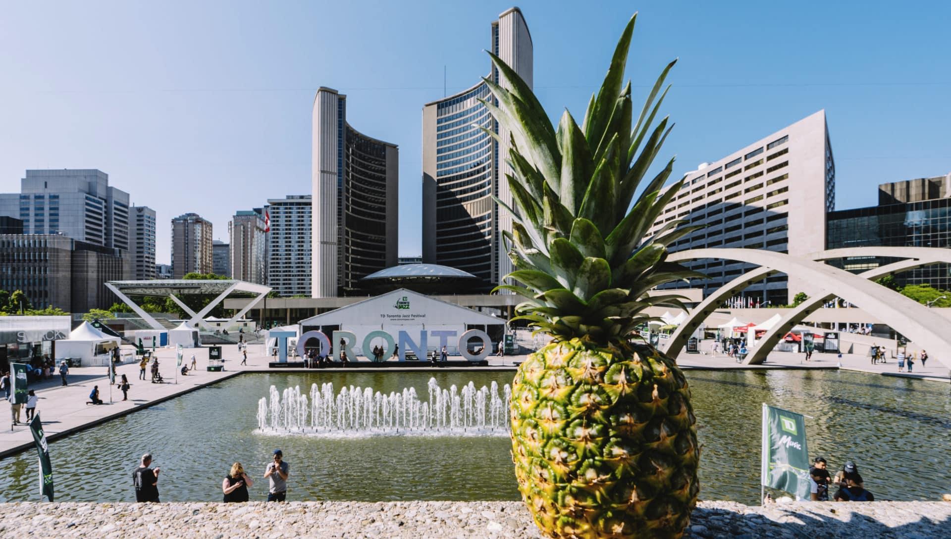 Pineapple Weltweit