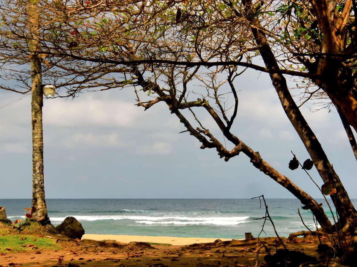 Playa Encuentro in der Dominikanischen Republik: Hierhier kommen die Wellenreiter
