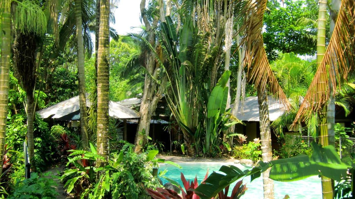 PKs Jungle Village am Cape Tribulation in Queensland Australien