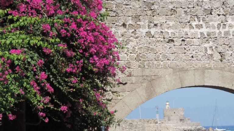 Blumen am Stadttor von Rhodos Stadt