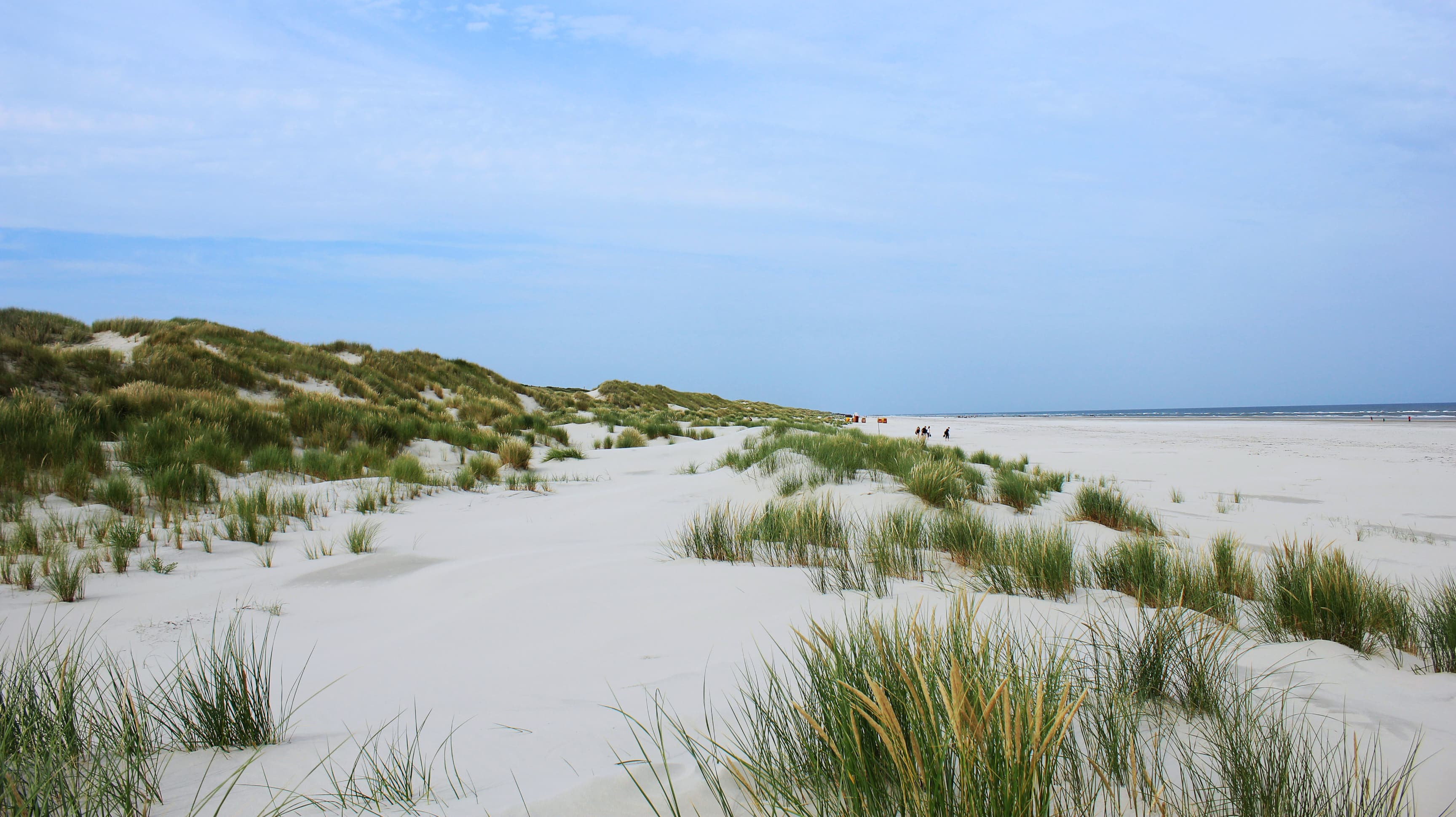 Am Rande des Strands: Die Dünen von Juist