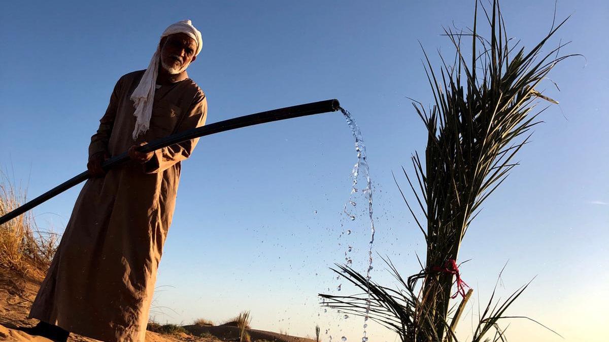 Nomade gießt Palme in der Wüste