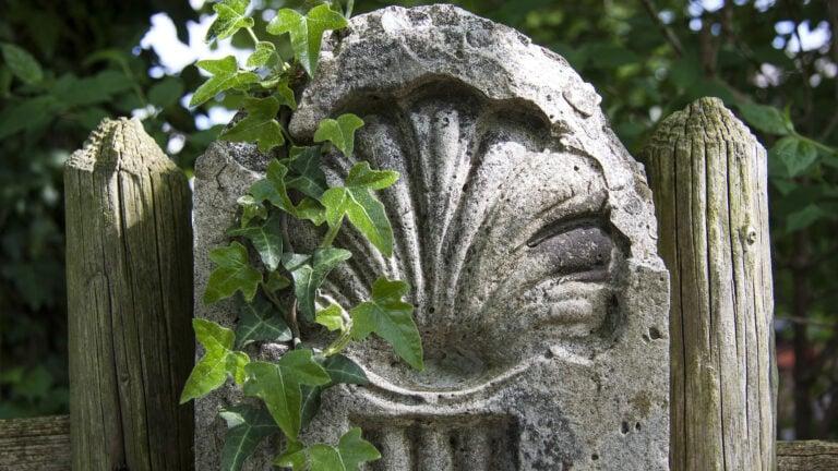Die Jakobsmuschel ist das Symbol der Pilger