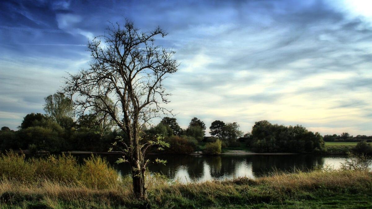 In der Natur rund um das Schönebecker Auetal gibt es viel zu entdecken